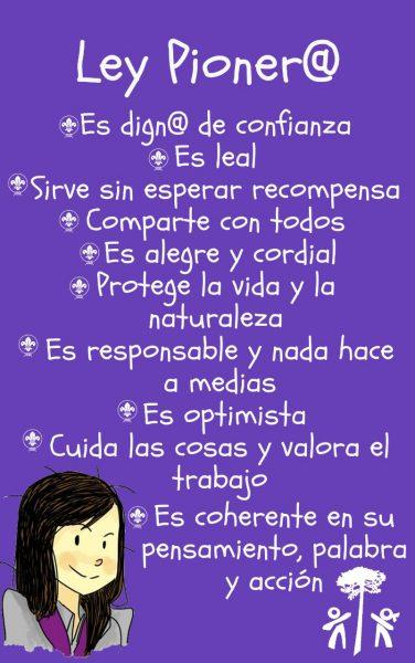 Ley_pioneros